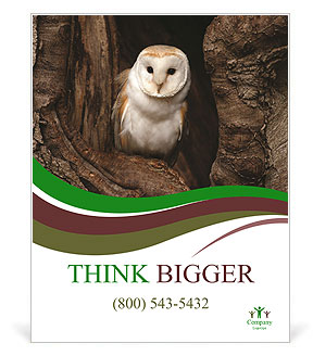 0000085673 Poster Template