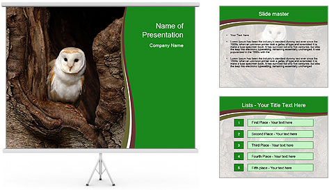 0000085673 PowerPoint Template