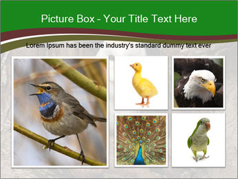 0000085673 PowerPoint Templates - Slide 19