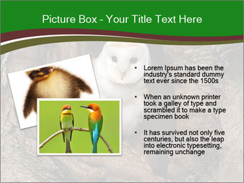 0000085673 PowerPoint Templates - Slide 20