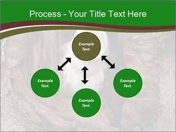 0000085673 PowerPoint Templates - Slide 91