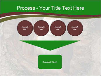 0000085673 PowerPoint Templates - Slide 93