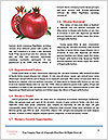 0000085683 Word Template - Page 4
