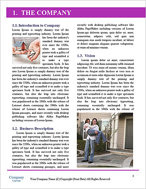 0000085692 Word Template - Page 3