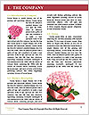 0000085696 Word Templates - Page 3