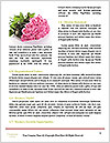 0000085696 Word Templates - Page 4