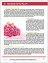 0000085696 Word Templates - Page 8