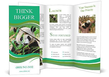 0000085699 Brochure Template