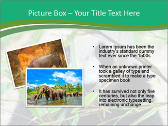 0000085699 PowerPoint Templates - Slide 20