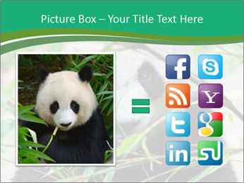 0000085699 PowerPoint Template - Slide 21