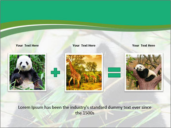 0000085699 PowerPoint Template - Slide 22