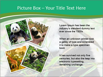 0000085699 PowerPoint Templates - Slide 23