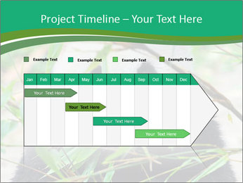 0000085699 PowerPoint Template - Slide 25
