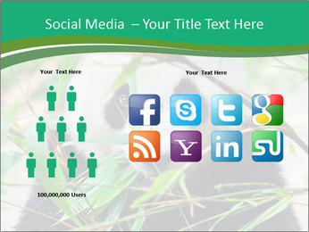 0000085699 PowerPoint Template - Slide 5