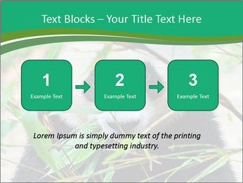 0000085699 PowerPoint Template - Slide 71