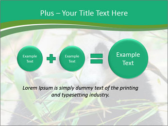 0000085699 PowerPoint Template - Slide 75
