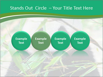 0000085699 PowerPoint Template - Slide 76