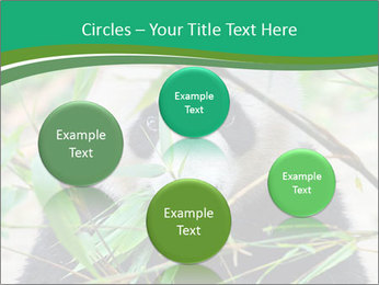 0000085699 PowerPoint Template - Slide 77