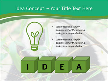 0000085699 PowerPoint Template - Slide 80