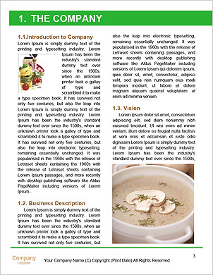 0000085708 Word Template - Page 3