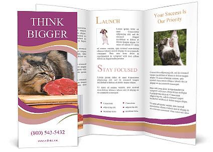 0000085713 Brochure Template