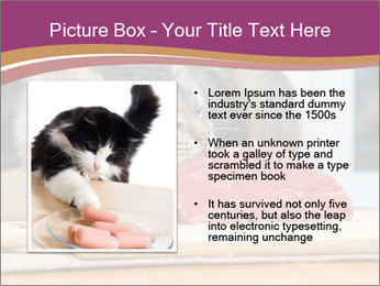 0000085713 PowerPoint Template - Slide 13