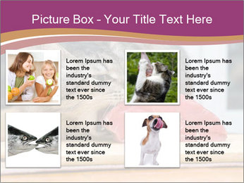 0000085713 PowerPoint Template - Slide 14