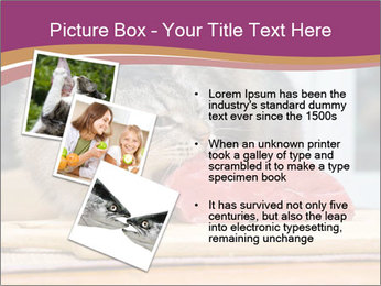 0000085713 PowerPoint Templates - Slide 17