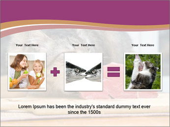 0000085713 PowerPoint Template - Slide 22