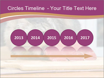 0000085713 PowerPoint Templates - Slide 29
