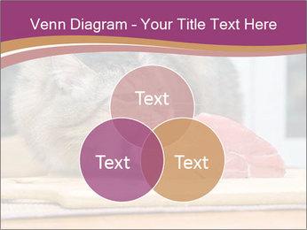 0000085713 PowerPoint Templates - Slide 33