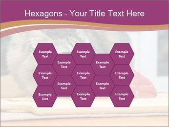 0000085713 PowerPoint Templates - Slide 44