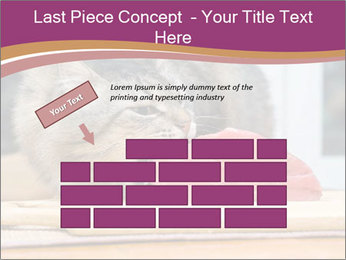 0000085713 PowerPoint Templates - Slide 46