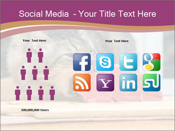 0000085713 PowerPoint Templates - Slide 5