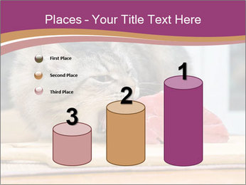 0000085713 PowerPoint Templates - Slide 65