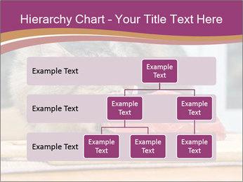 0000085713 PowerPoint Templates - Slide 67