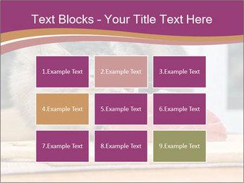 0000085713 PowerPoint Templates - Slide 68