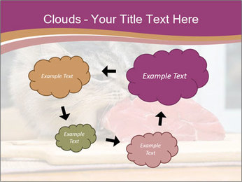 0000085713 PowerPoint Templates - Slide 72
