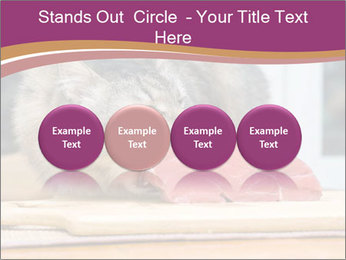 0000085713 PowerPoint Templates - Slide 76