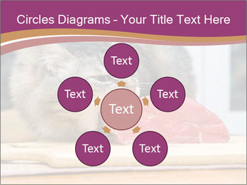 0000085713 PowerPoint Templates - Slide 78
