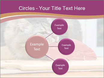 0000085713 PowerPoint Templates - Slide 79