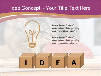 0000085713 PowerPoint Templates - Slide 80