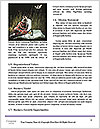 0000085717 Word Templates - Page 4
