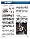 0000085730 Word Template - Page 3