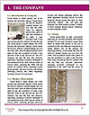0000085739 Word Template - Page 3