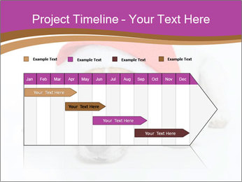0000085745 PowerPoint Template - Slide 25