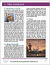 0000085748 Word Template - Page 3
