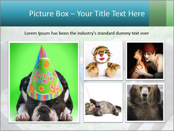 0000085758 PowerPoint Template - Slide 19