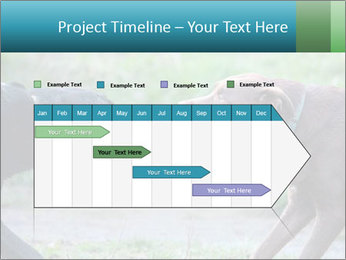 0000085758 PowerPoint Template - Slide 25