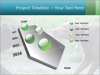 0000085758 PowerPoint Template - Slide 26